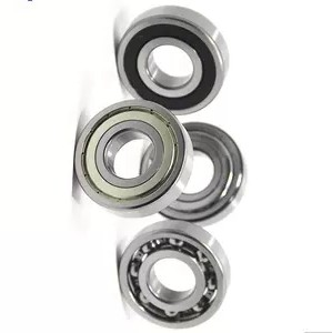 SKF Spare Parts 6304 2rsh/C3 6305 2RS1 6006 2RS1 & FAG 61907 2rsr 6205 2rsr C3 6206 2rsr ...